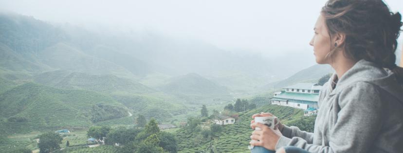 Weltmeise Cameron Highlands Tee Plantagen